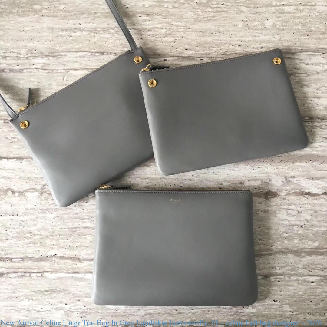 ce18df10d1 New Arrival Celine Large Trio Bag In Grey Lambskin Jacksonville